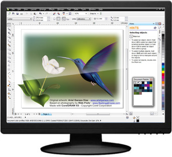 CorelDRAW Graphics Suite X5 Rus