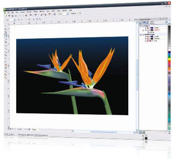 how to save in jpg from corel draw 7